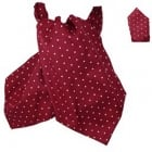 Warrior Matching Cravat & Hankerchief Burgundy & White Polka Dots